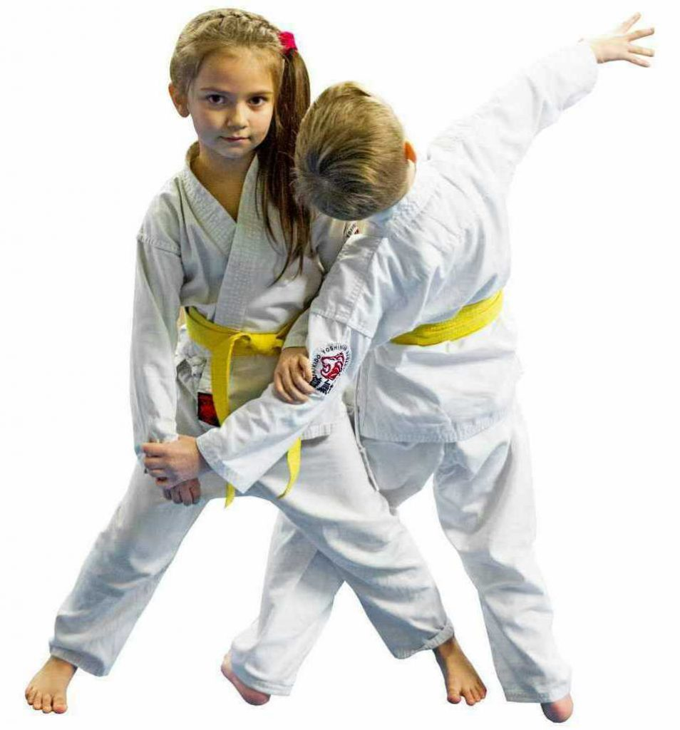 Айкидо акикай - спорт детям в Реутове